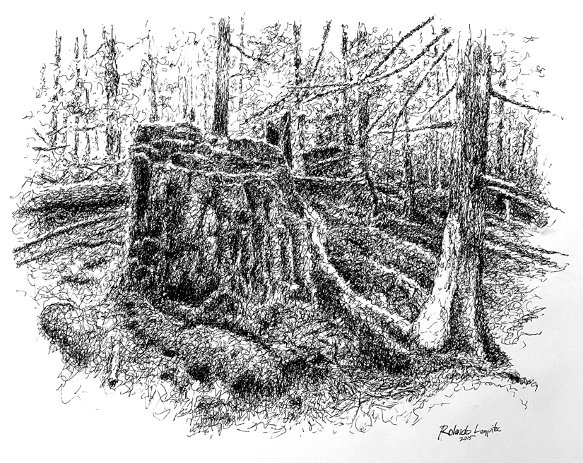 Stump - Pen + Ink